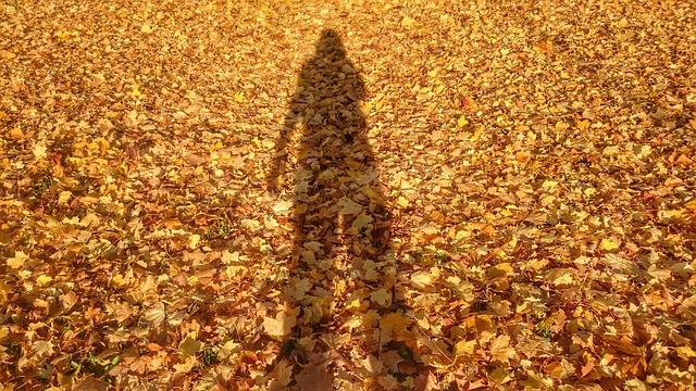 Golden Shadow